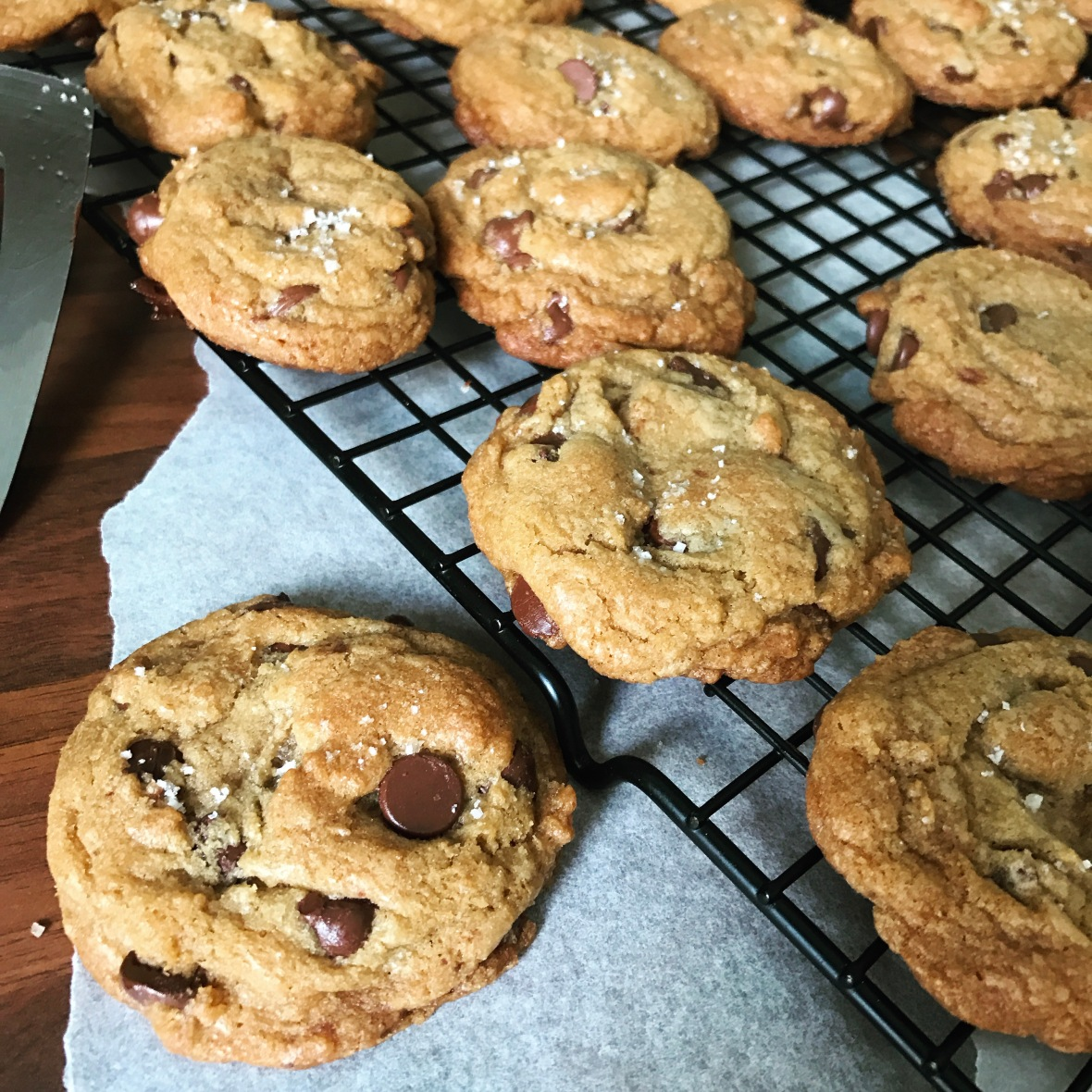 chocolate chip cookie report essay example Cookies trend report and custom cookies market research on biscuit, baked goods, cookie recipes, peanut biscuits, chocolate chip cookies and cookies trends.
